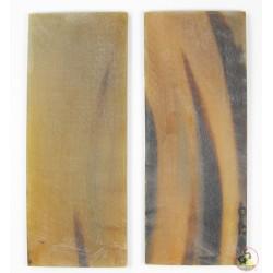 Leichte transparent mit schwarzen Streifen - White Buffalo Horn Platten