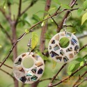 Organic Mother of Pearl - Circle - Silver - Earrings