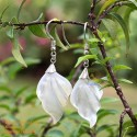 Organic Mother of Pearl - Leaf - Silver - Earrings