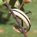 Природный рог браслет - Модель 0044