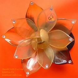 Цветок Органические Хорн хвостик