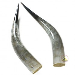 Polished From Marble Cattle Horns - Single